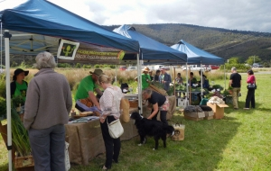 People shopping at the Huon market